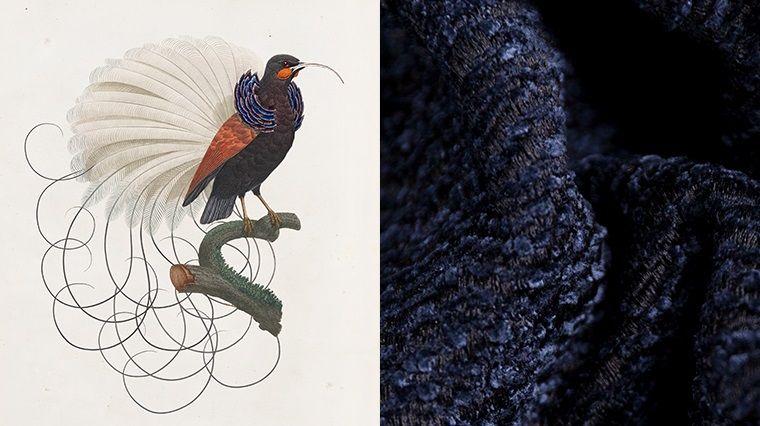 Музей вымерших животных. Мебельные ткани Moooi.